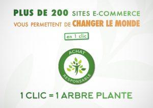 E-commerce-environnement